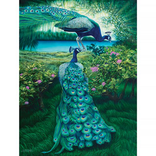 A Pair Of Peacocks 500 Piece Jigsaw Puzzle