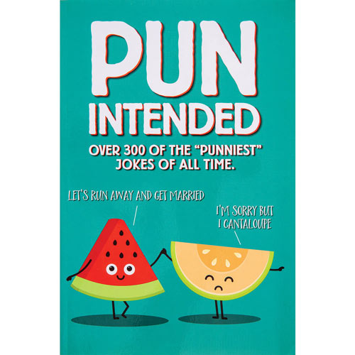Pun Intended Joke Book