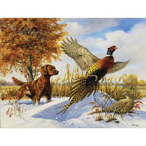 Irish Setter, Pheasant and Tree 550 Piece jigsaw Puzzle