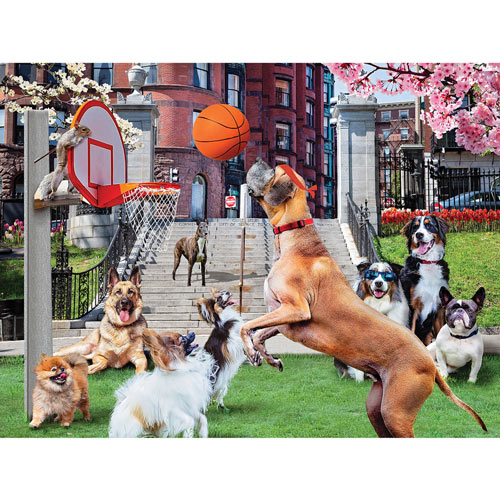 Shooting Hoops 1000 Piece Jigsaw Puzzle