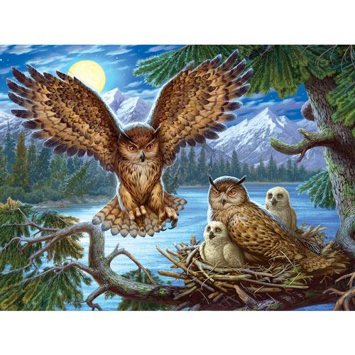Night Owl Family 300 Large Piece Jigsaw Puzzle