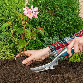 WellBuilt™ Bulb Planter