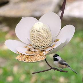 Magnolia Bird Feeder