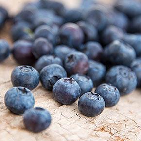 Blueberry Jersey