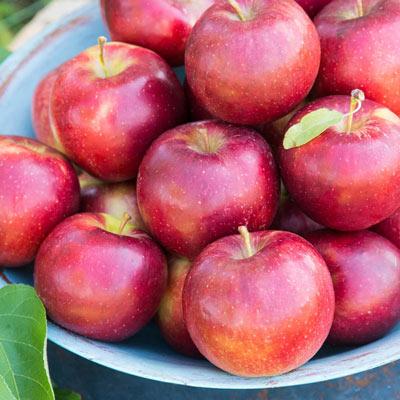 Apple Pixie Crunch™ Reachables<sup>®</sup>