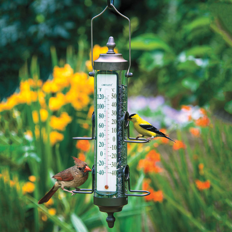 Bird Feeder Thermometer
