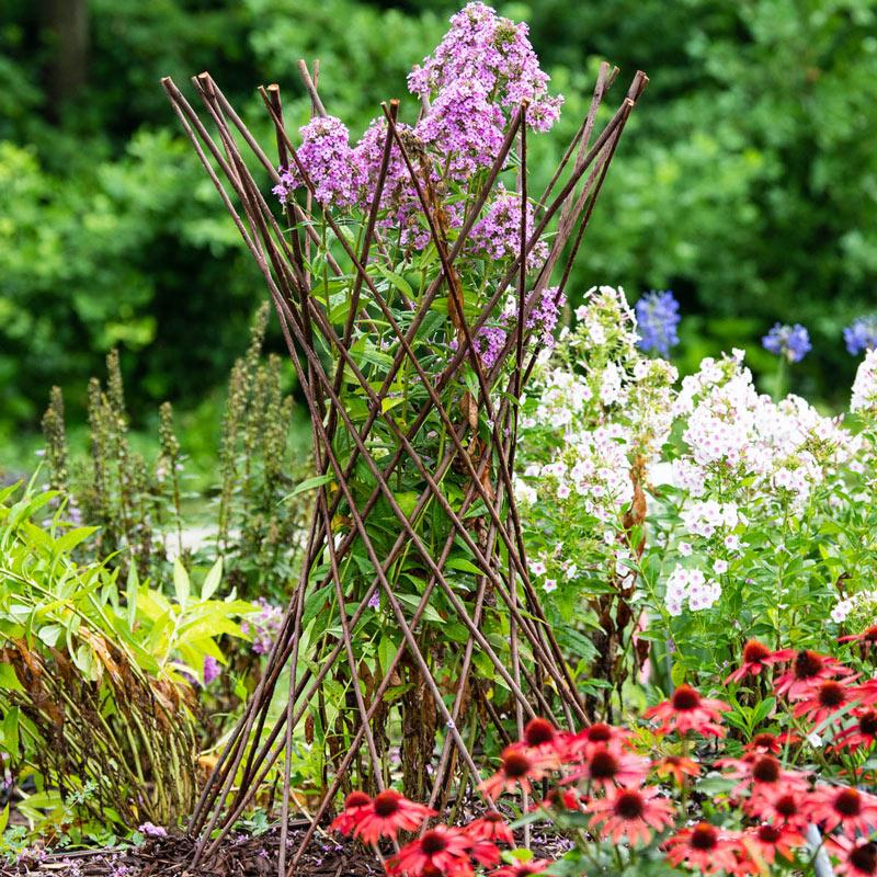 Willow Obelisk Plant Support