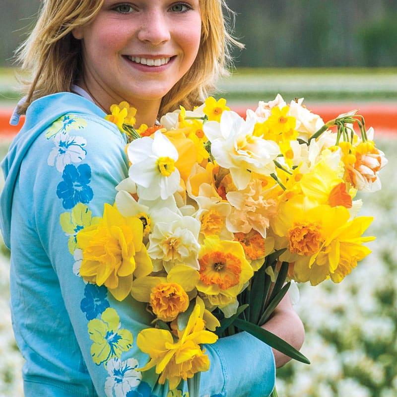 Fragrant Daffodil Mix