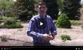 How to Mulch, Mulching Tips and Info Video
