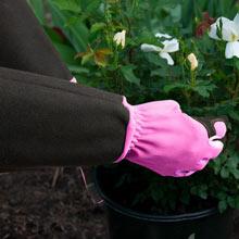 Pruning Gardening Gloves- Pink - Medium