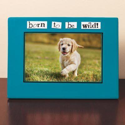 Born Wild! Frame