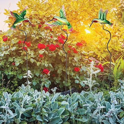 Hummingbird Yard Stakes-S/3