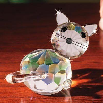 Curious Crystal Cat