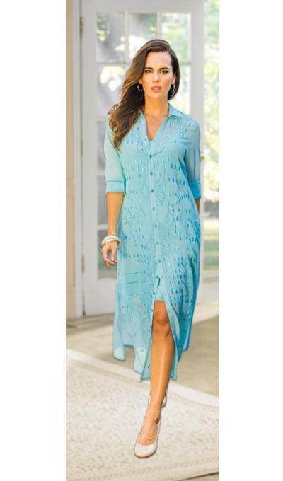 Chic Embroidered Dress & Slip