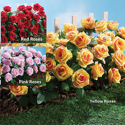All-Weather Forever Blooms - Red Roses