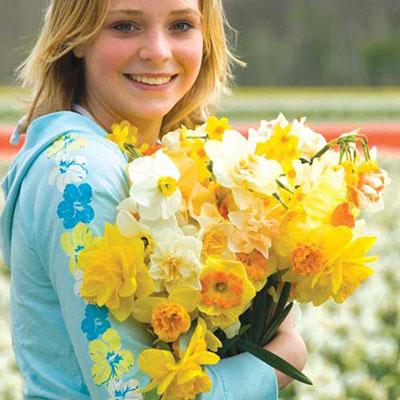 Spring Bonanza Daffodil Mixture