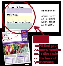 Catalog Quick order