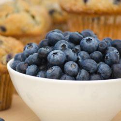 Blueberry Superior