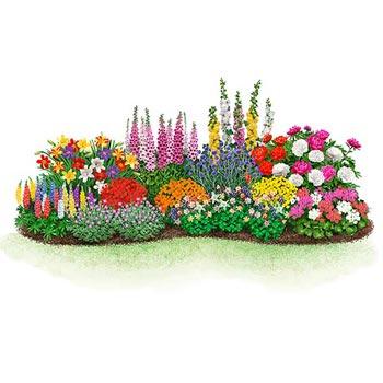 Beginneru0027s Endless Bloom Perennial Garden