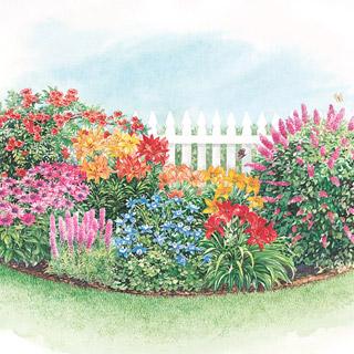 Beautiful Sun Perennial Gardens
